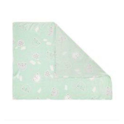 Cobertor-Papi-Microfibra-urso-4691-verde-